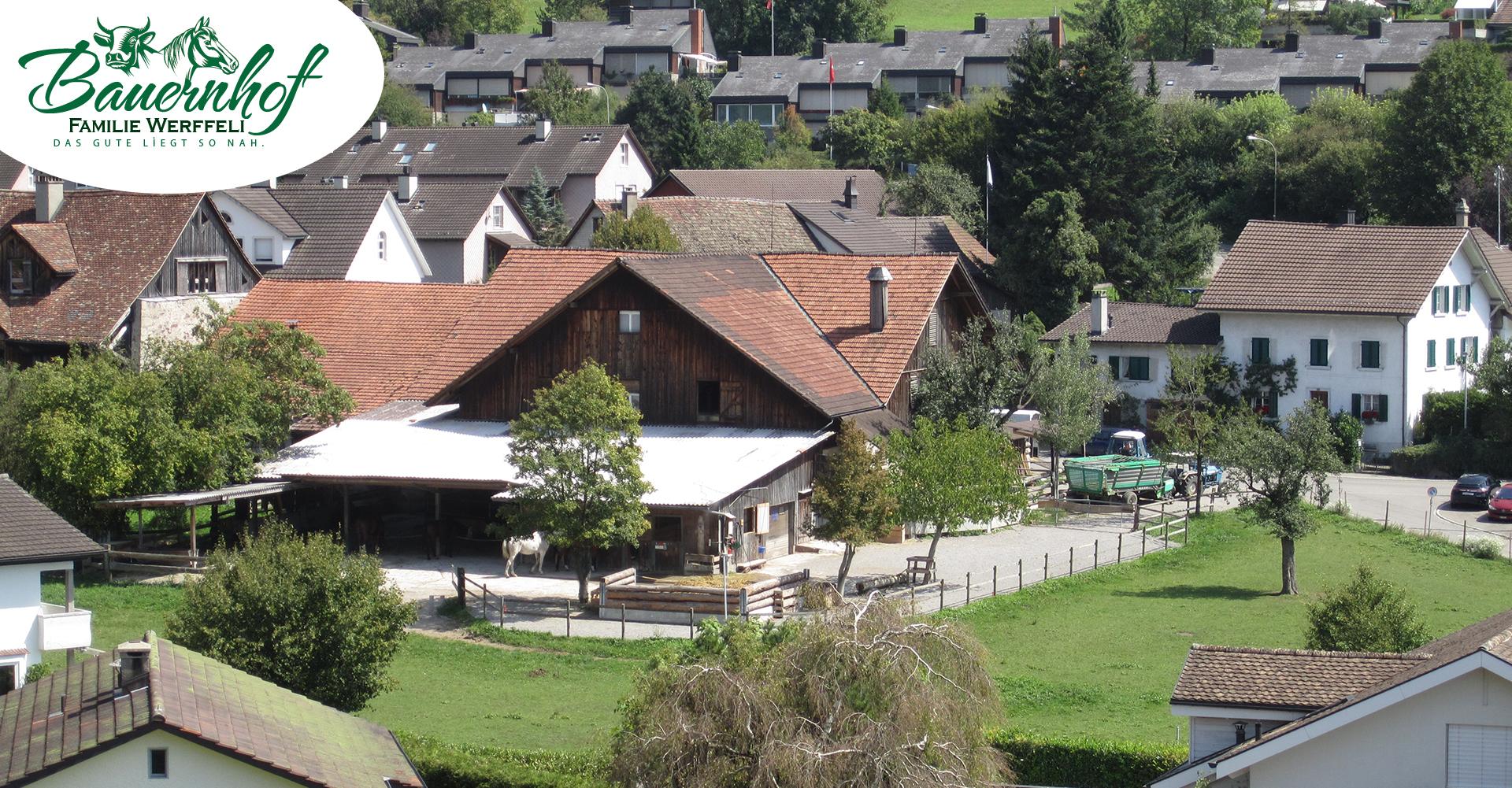 bauernhof-familie-werffeli-slide02