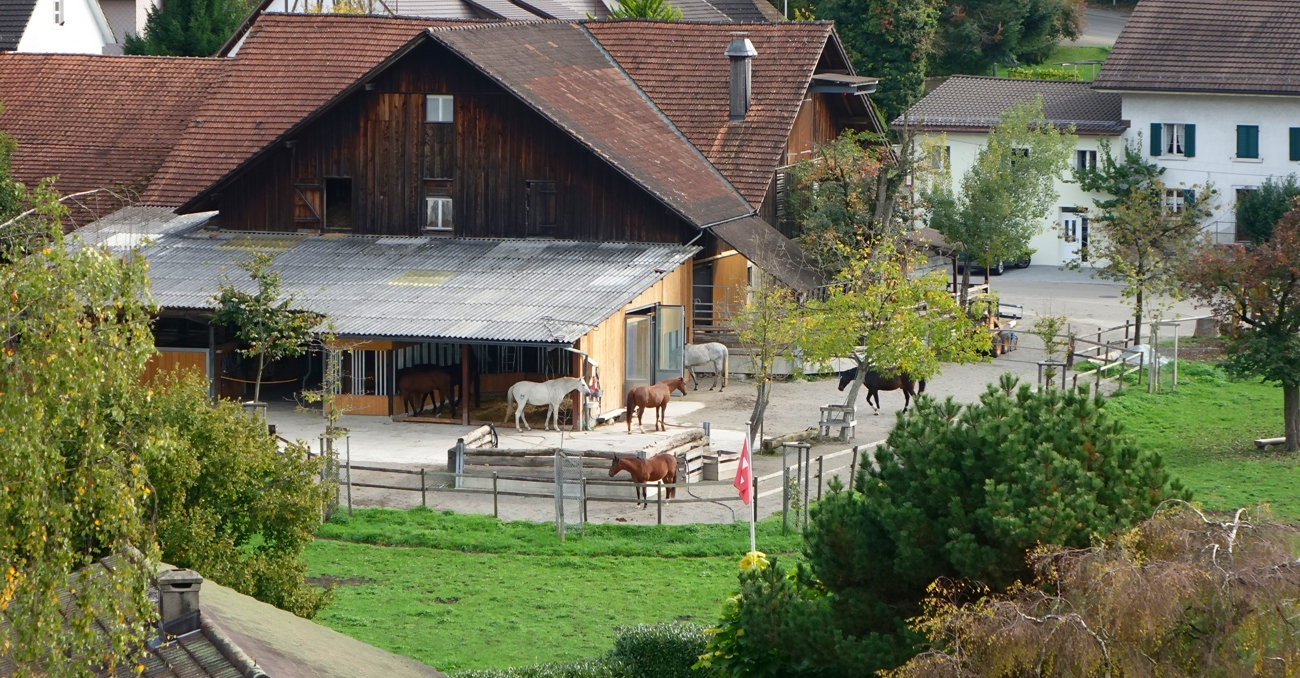 Bauernhof-Werffeli-Startbild